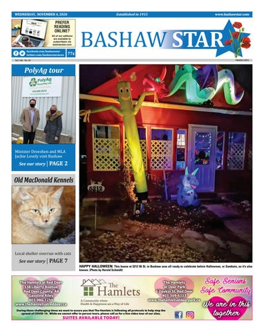 Bashaw Star, November 4, 2020
