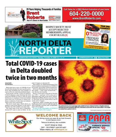 North Delta Reporter, November 19, 2020