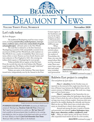 Beaumont News November 2020
