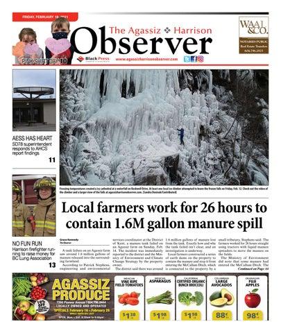 Agassiz Observer, February 19, 2021